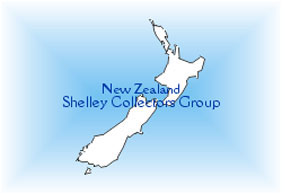 New Zealand Shelley Collectors Club